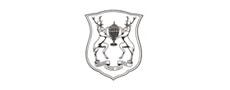 Chippendale Mobilya Okulu