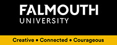 Falmouth Üniversitesi